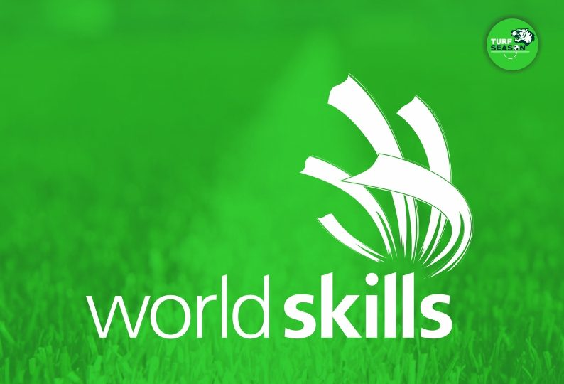 world skills day - july 15